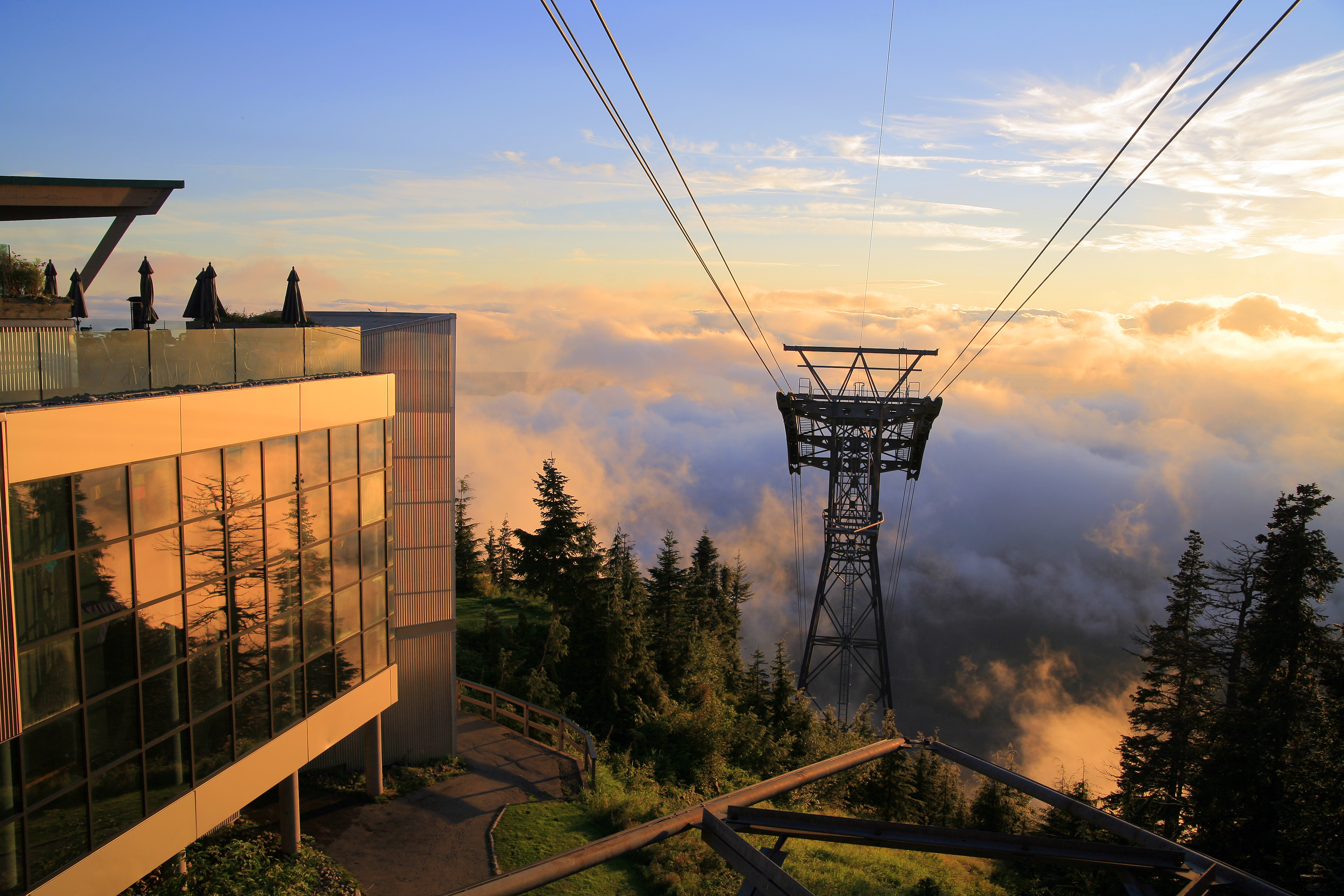 View Of Lower Lonsdale And Downtown Vancouver From The Top Grouse Mountain